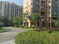 利华世纪新城三期 106 24楼 3室2厅 毛坯 76万